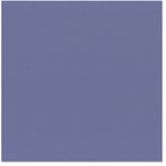 Bazzill Basics - 12 x 12 Cardstock - Orange Peel Texture - Navy