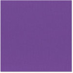 Bazzill Basics - 12 x 12 Cardstock - Canvas Texture - Purple