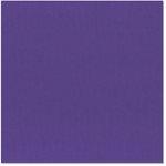 Bazzill - 12 x 12 Cardstock - Grasscloth Texture - Concord Grape