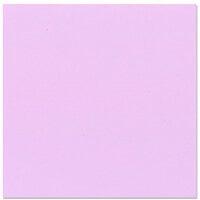 Bazzill Basics - 12 x 12 Cardstock - Grasscloth Texture - Purple Palisades