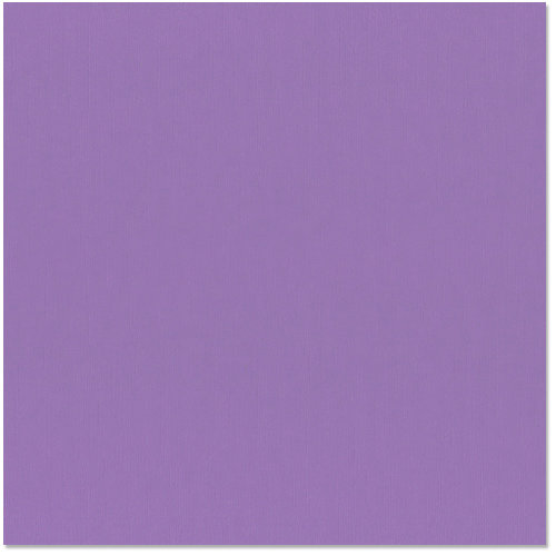 Bazzill Basics - 12 x 12 Cardstock - Grasscloth Texture - Purple Pizzazz