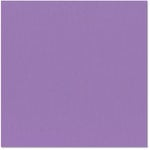 Bazzill - 12 x 12 Cardstock - Grasscloth Texture - Purple Pizzazz