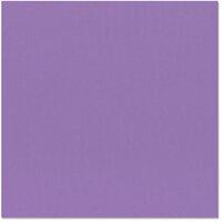 Bazzill Basics - 12 x 12 Cardstock - Grasscloth Texture - Purple Pizzazz