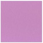Bazzill Basics - 12 x 12 Cardstock - Grasscloth Texture - Snapdragon