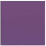 Bazzill - 12 x 12 Cardstock - Smooth Texture - Boysenberry Delight