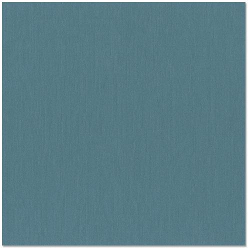 Bazzill - 12 x 12 Cardstock - Canvas Texture - Simon