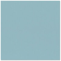 Bazzill Basics - 12 x 12 Cardstock - Smooth Texture - Tropical Breeze