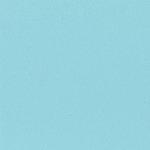 Bazzill Basics - 12 x 12 Cardstock - Orange Peel Texture - Teal