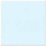 Bazzill Basics - 12 x 12 Cardstock - Orange Peel Texture - Powder
