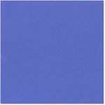 Bazzill - 12 x 12 Cardstock - Criss Cross Texture - Blue Jean