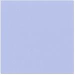 Bazzill Basics - 12 x 12 Cardstock - Orange Peel Texture - Skylar
