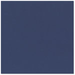 Bazzill - 12 x 12 Cardstock - Classic Texture - Navy