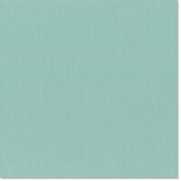 Bazzill Basics - 12 x 12 Cardstock - Grasscloth Texture - Whirlpool