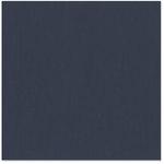 Bazzill - 12 x 12 Cardstock - Canvas Texture - Nightmist