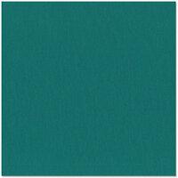 Bazzill Basics - 12 x 12 Cardstock - Grasscloth Texture - Blue Calypso