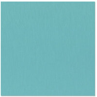 Bazzill Basics - 12 x 12 Cardstock - Grasscloth Texture - Artesian Pool