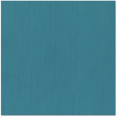 Bazzill - 12 x 12 Cardstock - Grasscloth Texture - Blue Oasis