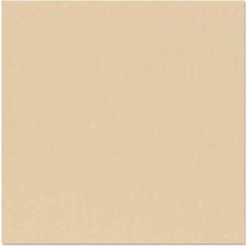 Bazzill - 12 x 12 Cardstock - Burlap Texture - Champagne