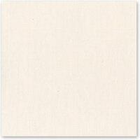 Bazzill Basics - 12 x 12 Cardstock - Canvas Texture - Vanilla