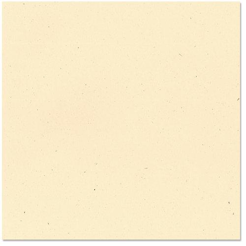 Bazzill Basics - 12 x 12 Cardstock - Classic Texture - Sawdust
