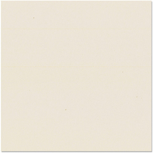 Bazzill - 12 x 12 Cardstock - Orange Peel Texture - Wheat