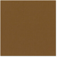 Bazzill Basics - 12 x 12 Cardstock - Canvas Texture - Chocolate