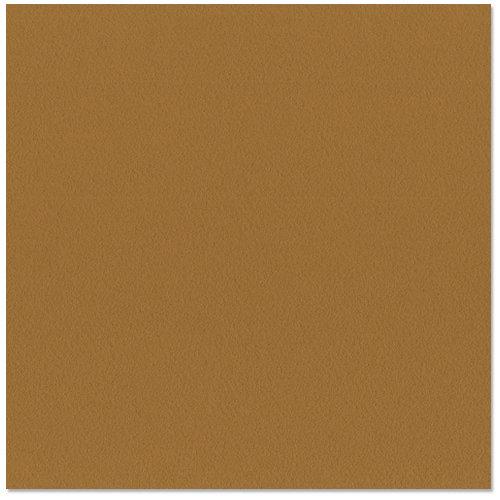 Bazzill - 12 x 12 Cardstock - Orange Peel Texture - Java