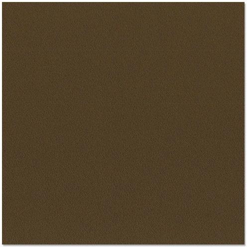 Bazzill - 12 x 12 Cardstock - Orange Peel Texture - Espresso