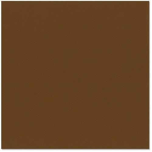 Bazzill - 12 x 12 Cardstock - Grasscloth Texture - Truffle