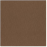 Bazzill Basics - 12 x 12 Cardstock - Grasscloth Texture - Carob