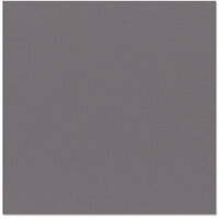 Bazzill Basics - 12 x 12 Cardstock - Grasscloth Texture - Dusk