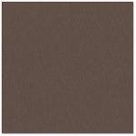 Bazzill Basics - 12 x 12 Cardstock - Grasscloth Texture - London Fog