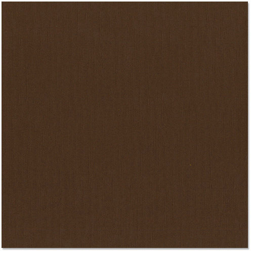 Bazzill Basics - 12 x 12 Cardstock - Canvas Texture - Brown