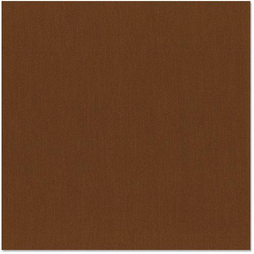 Bazzill - 12 x 12 Cardstock - Canvas Texture - Nutmeg