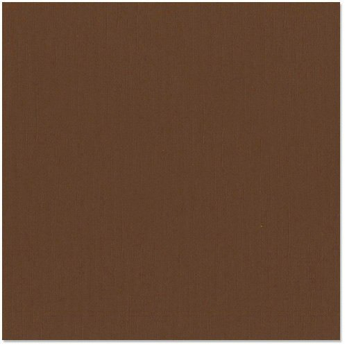 Bazzill - 12 x 12 Cardstock - Grasscloth Texture - French Silk