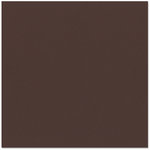 Bazzill - 12 x 12 Cardstock - Grasscloth Texture - Mud Pie