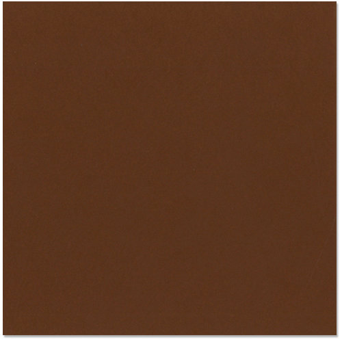 Bazzill - 12 x 12 Cardstock - Smooth Texture - Chocolate Cream
