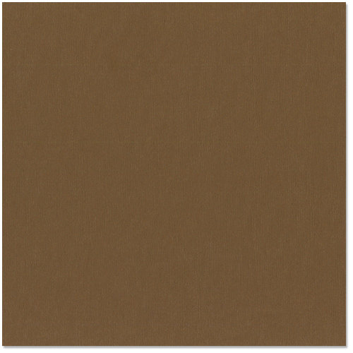 Bazzill Basics - 12 x 12 Cardstock - Canvas Texture - Bark