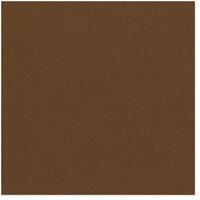 Bazzill Basics - 12 x 12 Cardstock - Canvas Texture - Pinecone