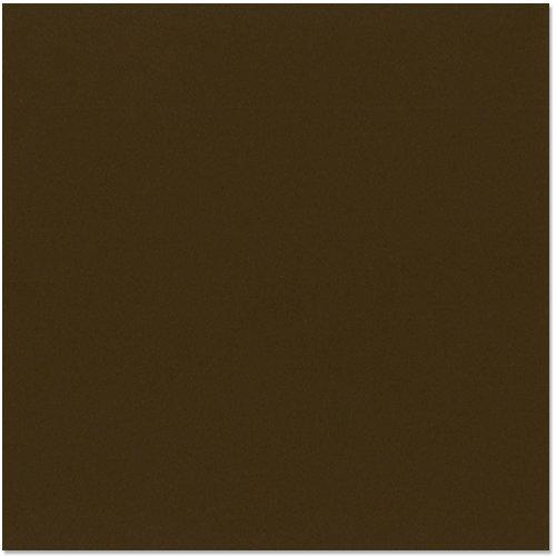 Bazzill - 12 x 12 Cardstock - Canvas Texture - Java