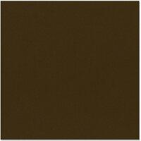 Bazzill Basics - 12 x 12 Cardstock - Canvas Texture - Java