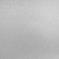 Best Creation Inc - 12 x 12 Glitter Cardstock - Silver