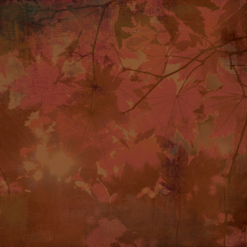 BasicGrey - Indian Summer Collection - 12 x 12 Paper - Dogwood, CLEARANCE