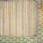 BasicGrey - Plumeria Collection - 12 x 12 Double Sided Paper - Dusk