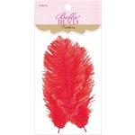 Bella Blvd - Feathers - McIntosh