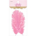 Bella Blvd - Feathers - Cotton Candy