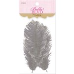 Bella Blvd - Feathers - Oyster