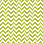Bella Blvd - Color Chaos Collection - Clear Cuts - 12 x 12 Transparency - Chevies Pickle Juice
