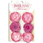 BoBunny - Blossoms - Pansy - Blush