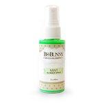 BoBunny - Glimmer Spray - Mint